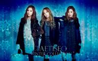 TaeTiSeo | Winter Collection