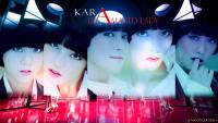 Kara | Damage Lady
