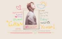 Luhan Birthday Project (20)