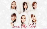 Apink | Mr.Chu In Snow