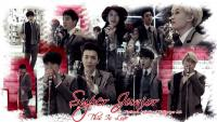 Super Junior | This Is Love MV