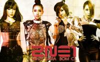 TOP 40 Kpop Girl Groups Of 2013 | #2 2NE1