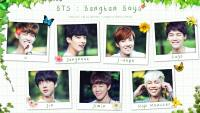 BTS : Bangtan Boys [2nd muster goods photo set]