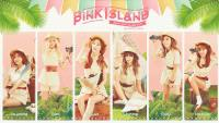 PINK ISLAND [Apink 2nd Concert]