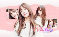 #1 wallpaper // Hani