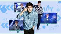 Lay .. Bluewall