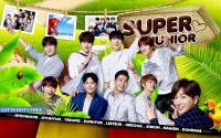 Super Junior★LOTTE DUTY [2015]