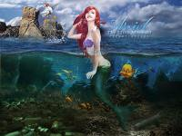Ariel : Part of my world