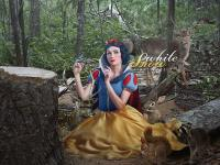 Snow White : Who destroyed my forest ?
