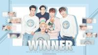 WINNER - ORDINARY LOVE