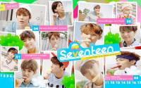 Seventeen ♥ Very Nice  [Repackage Album]