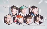 BANGTAN // Japan Profile Photo