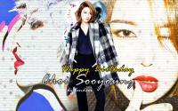 Happy Sooyoung Day