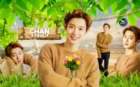 ★ Chanyeol ★ Haru Hana Magazine