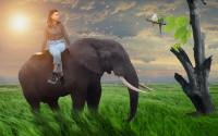Girl on Elephant in Forest